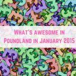 Poundland Finds January 2015