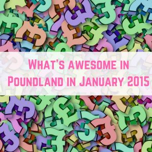Poundland Finds January 2015