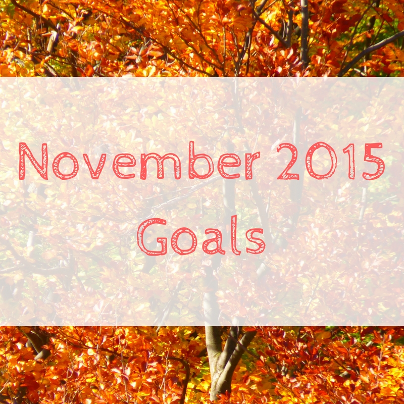 november-2015-goals-1