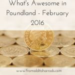 What's Awesome in Poundland February 2016