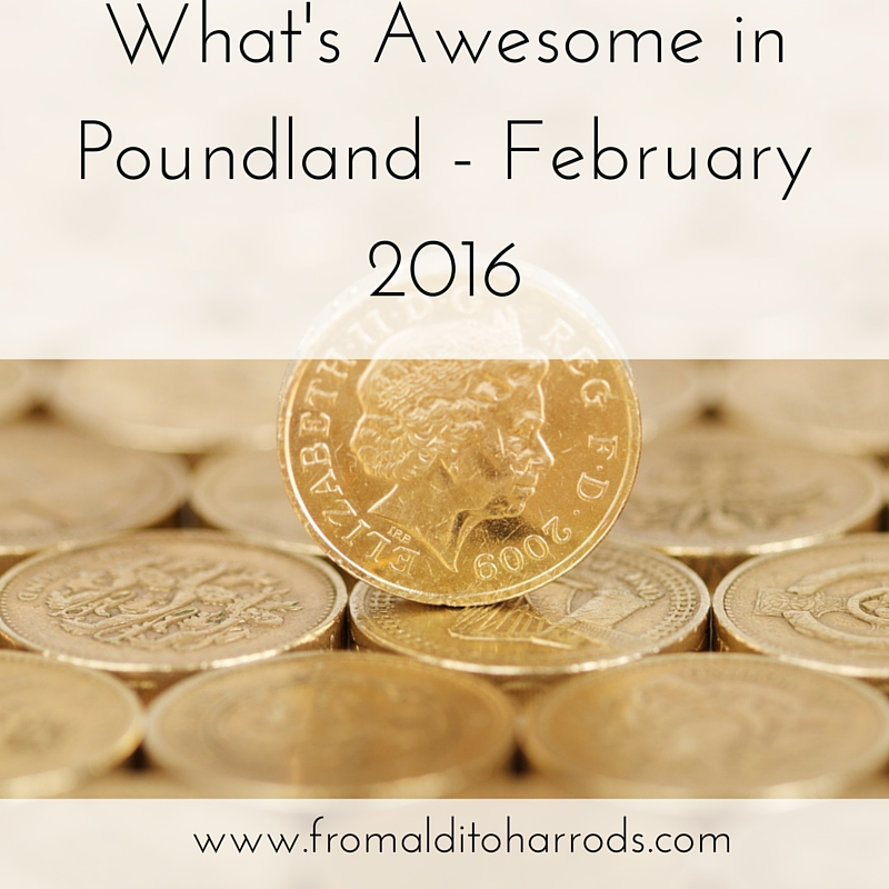 What's Awesome in Poundland - February 2016