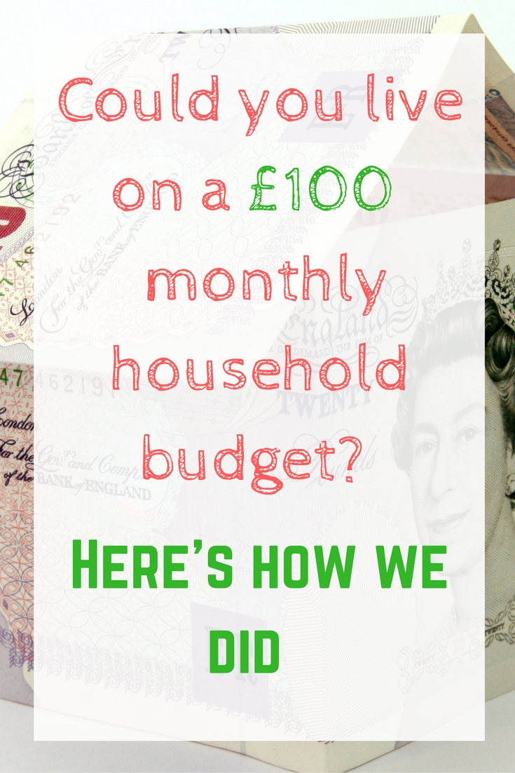 could-you-live-on-a-100-monthly-household-budget