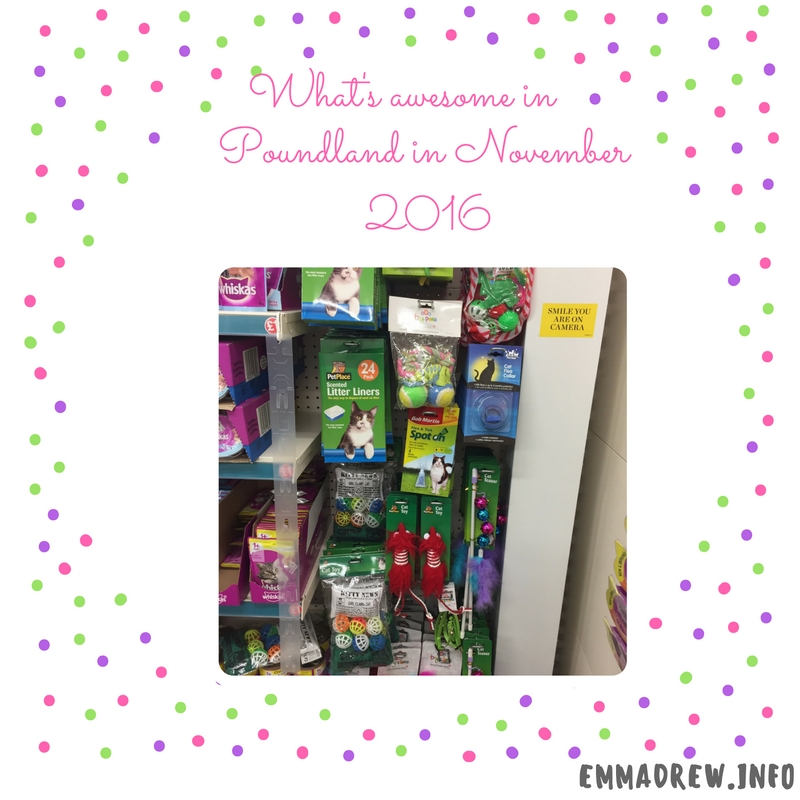 spotted-in-poundland-in-november-2016-25