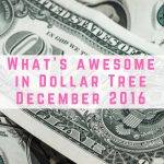 What's awesome in Dollar Tree December 2016