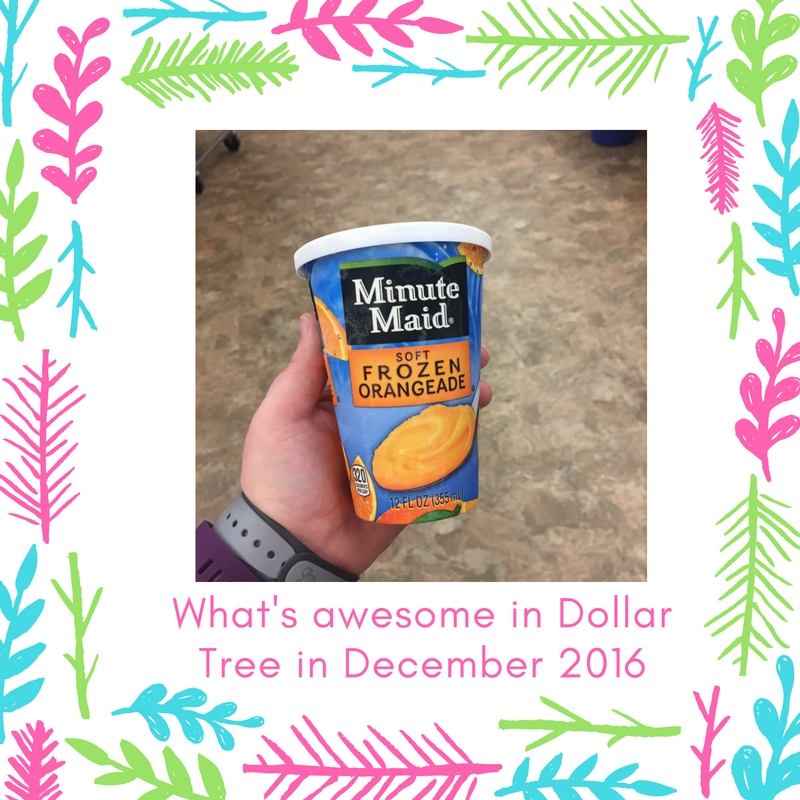 whats-awesome-in-dollar-tree-in-december-2016-20