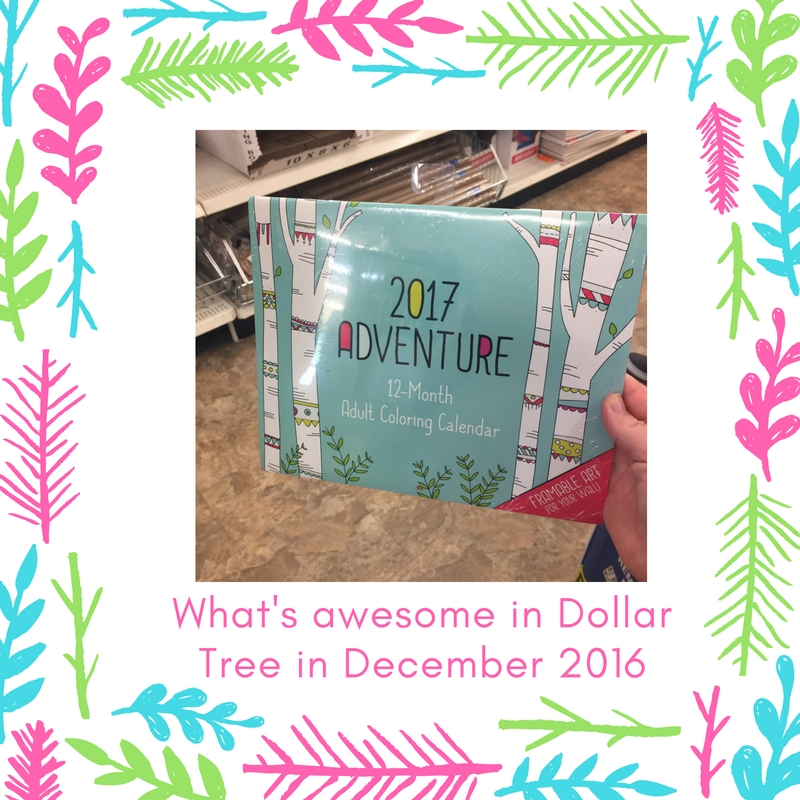 whats-awesome-in-dollar-tree-in-december-2016-23
