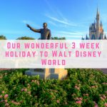 Our wonderful 3 week holiday to Walt Disney World