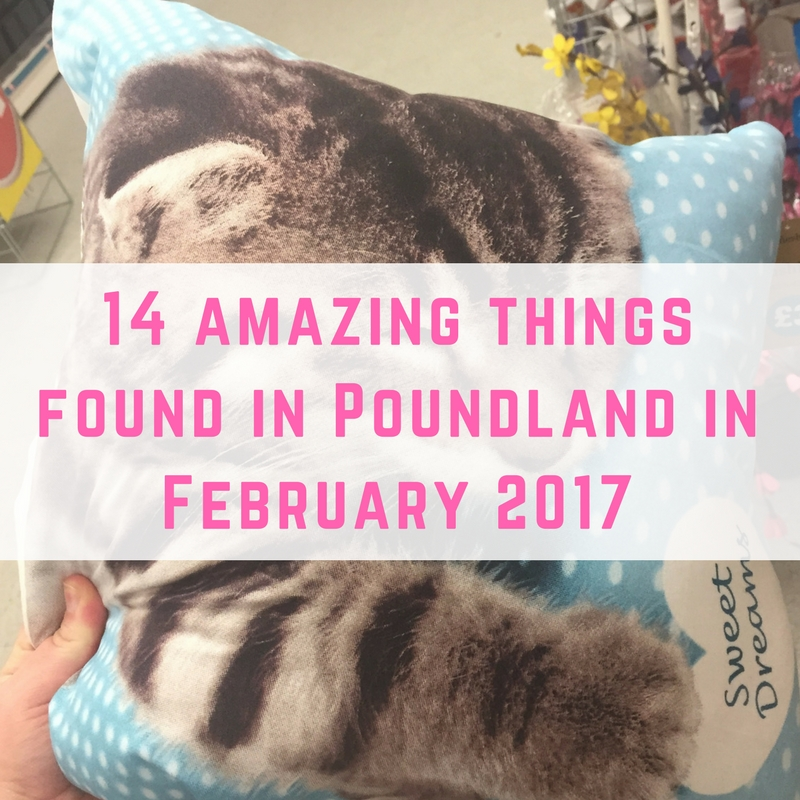 14 amazing things found in Poundland in February 2017