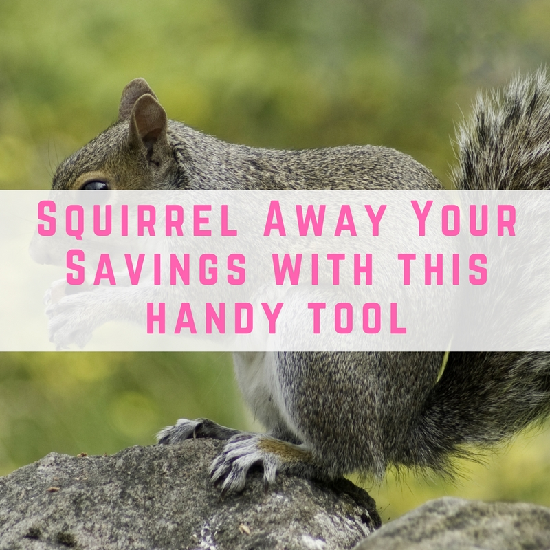 Squirrel Away Your Savings easily with this handy tool