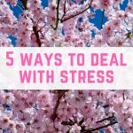 5 ways for you to deal with stress