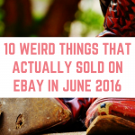 10 Weird Things That Sold on eBay in June 2016