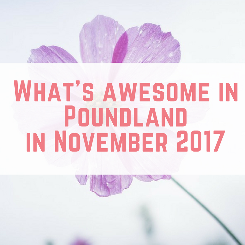 What's Awesome in Poundland in November 2017