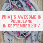 What's Awesome in Poundland September 2017