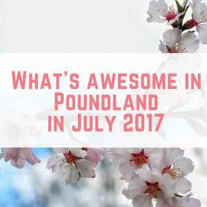 What's awesome in Poundland in July 2017