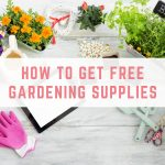 How to get free garden stuff for your garden