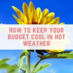 Monday Money #9: How to keep your budget cool in hot weather