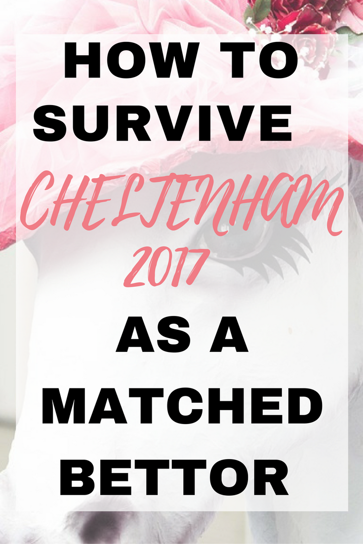 How to survive Cheltenham 2017 as a matched bettor