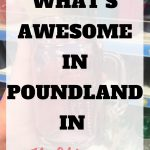 What's awesome in Poundland in July 2018