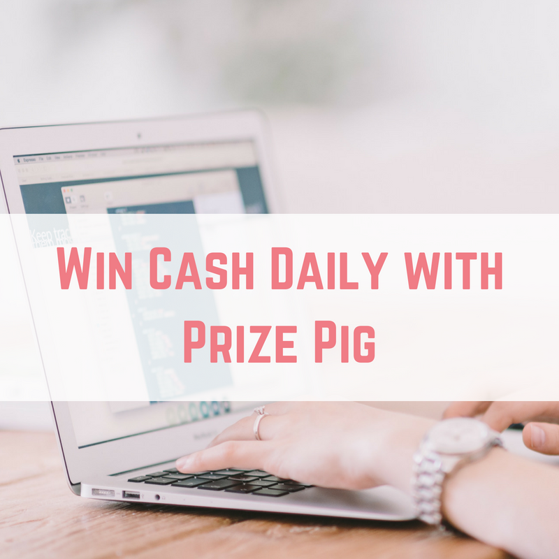 Win Cash Daily with Prize Pig