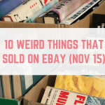 10 Weird Things That Sold on eBay in November 2015
